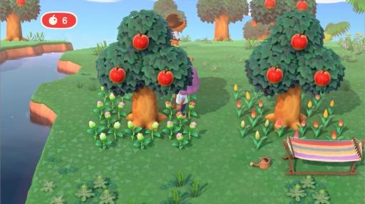 の 替え あつ 植え 森 木